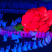 Honoring the Kimjongilia flower at the Arirang Mass Games, Pyongyang, DPRK (North Korea)