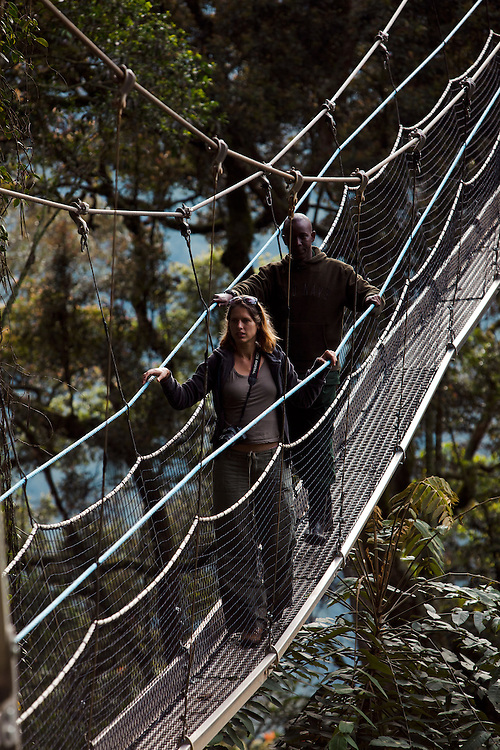 Writer Antonia Windsor tekking on tree top canopy walk, Nyungwe Forest, Rwanda