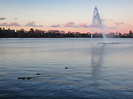 The Reservoir in Central Park at dusk.