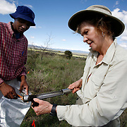 Dr. Diana H. Wall, from the Natural Resource Ecology lab at Colorado State University,  takes soil samples during a research trip to look at below ground animal diversity at  Kapiti Plains near Machakos, Kenya.  She is assisted by ILRI (International Livestock Research Institute) worker Sauna Lemiruni.