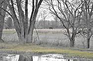 Ohio countryside
