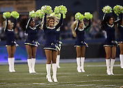 The Seattle Seahawks Sea Gals cheerleaders wave pom poms as they do a dance routine before the NFL week 19 NFC Divisional Playoff football game against the Carolina Panthers on Saturday, Jan. 10, 2015 in Seattle. The Seahawks won the game 31-17. ©Paul Anthony Spinelli