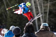 2015 Skiesta