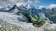 Snow in August on Männlichen Royal Walk, above Wengen and Lauterbrunnen Valley, Switzerland, the Alps, Europe. Jungfrau (13,642 ft) rises 11,000 feet above Lauterbrunnen. This image was stitched from multiple overlapping photos.