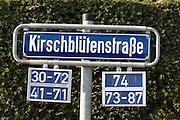 Schild Kirschblütenstraße, Wiesbaden, Hessen, Deutschland | streetname sign Frauenstein, Wiesbaden, Hesse, Germany