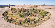 "Cactus and grass grow in a bowl atop Enchanted Rock. Explore a large pink granite dome at Enchanted Rock State Natural Area, between Fredericksburg and Llano, Texas, USA. Enchanted Rock is a fascinating exfoliation dome (with layers like an onion), rising 425 feet (130 m) above its surroundings to elevation of 1825 feet (556 m) above sea level, in the Llano Uplift. Geologically, the exposed rock (monadnock or inselberg, ""island mountain"") is part of a pluton (bubble of rock slowly crystallized from magma) within the billion-year-old igneous batholith, Town Mountain Granite (covering 62 square miles mostly underground), which intruded from a deep pool of hot magma 7 miles upwards into the older metamorphic Packsaddle Schist. The overlying sedimentary rock (Cretaceous Edwards limestone) eroded away to expose the prominent domes seen today: Enchanted Rock, Little Rock, Turkey Peak, Freshman Mountain, and Buzzard's Roost. This panorama was stitched from 2 overlapping photos."