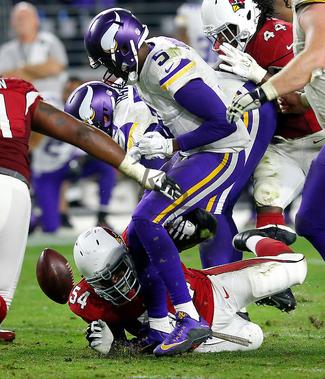 Arizona Cardinals inside linebacker Dwight Freeney (54) forces Minnesota Vikings quarterback Teddy Bridgewater (5) to fumble during the second half of an NFL football game, Thursday, Dec. 10, 2015, in Glendale, Ariz. The Cardinals recovered the ball to secure the 23-20 win. (AP Photo/Rick Scuteri)