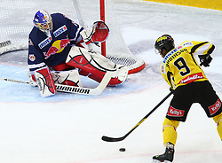 13.01.2012, Albert Schultz Halle, Wien, AUT, EBEL, UPC Vienna Capitals vs EC Red Bull Salzburg, im Bild Joshuan Tordjman, (EC Redbull Salzburg, #39) und Nathan Robinson, (UPC Vienna Capitals, #9)  // during the icehockey match of EBEL between UPC Vienna Capitals (AUT) and EC Red Bull Salzburg (AUT) at Albert Schultz Halle, Vienna, Austria on 13/01/2012,  EXPA Pictures © 2012, PhotoCredit: EXPA/ T. Haumer