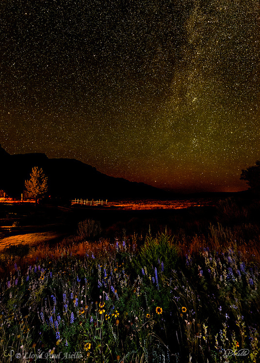 The Milky Way rises above a field of wildflowers lit by a nearby cabin at Kestrel Ranch, Cody, Wyoming. (Exposure stack of 2 images.)
