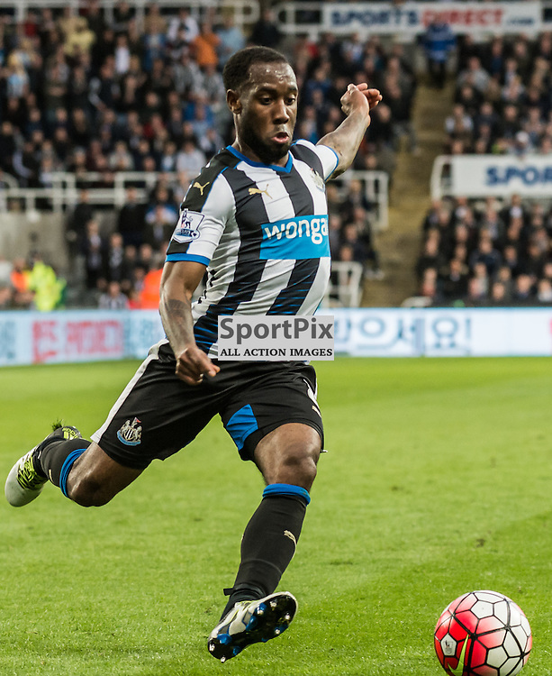 Newcastle United midfielder Vurnon Anita (8)on the ball in the Premier League match between Newcastle United and Manchester City <br /> <br /> (c) John Baguley | SportPix.org.uk