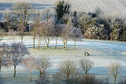 © Licensed to London News Pictures.  12/12/2012. WENDOVER, UK. A golfer plays in a frozen golf course in the Chilterns near Wendover. Overnight freezing temperatures combined with fog created a hoarfrost covering everything in ice crystals and turning the landscape white. Photo credit :  Cliff Hide/LNP
