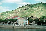 Frankrijk, Rhonedal, 8-7-2002Het wijnstadje Tain l'hermitage aan de oever van de Rhone. Toerisme, wijnproductie .LandbouwFoto: Flip Franssen/Hollandse Hoogte