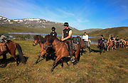 Dyrhaug ridesenter, Ramsjøhytta. Foto: Bente Haarstad Flere firma satser på hesteturisme fjellet i Tydal, og i bygda Stugudal er det flere islandshester enn fastboende. There are many possibilities for riding in the mountains in Tydal in Mid-Norway. Dyrhaug Ridesenter. Dyrhaug Ridesenter,