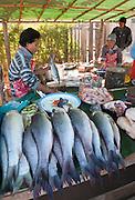 Kalaw fruit and fish market near Heho, Burma
