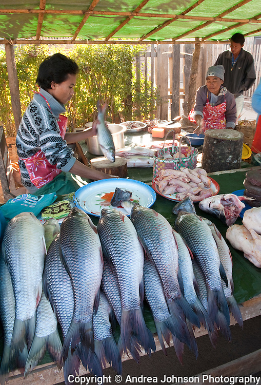 Kalaw fruit and fish market near Heho, Burma