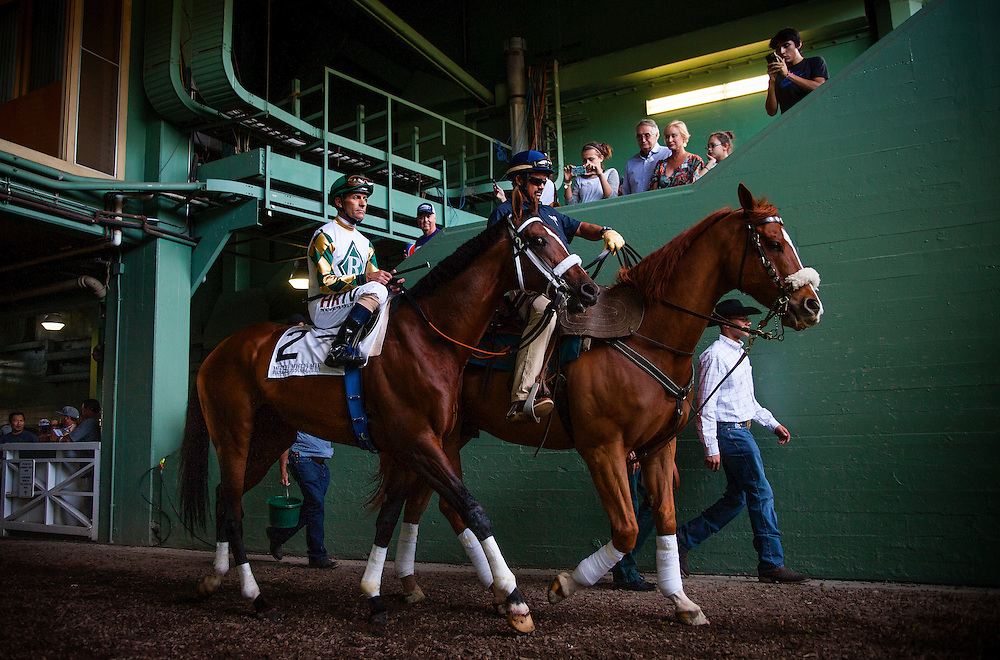 Mucho Macho Man, ridden by Gary Stevens at the Santa Anita Handicap (G1) aboard Game on Dude at Santa Anita Park on March 8, 2014 in Arcadia, California (Photo by Evers/Eclipse Sportswire)