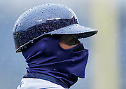 Tampa Bay Rays third base coach Tom Foley is covered from the cold and rain during a baseball game against the Kansas City Royals at Kauffman Stadium in Kansas City, Mo., Thursday, May 2, 2013.  (AP Photo/Colin E. Braley).