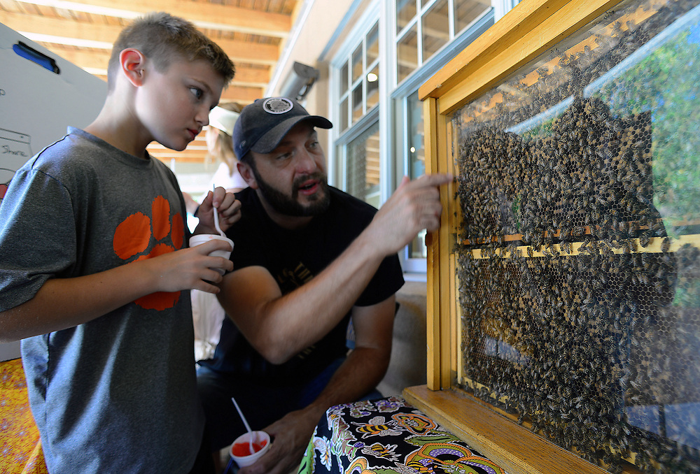 apl061817i/ASECTION /pierre-louis/JOURNAL 061817<br /> Beekeeper John Feuerherd,center  shows his 9 year-old son Logan,, a display hive during  the Albuquerque Bee City USA  celebration of pollinators held at the Open Space Visitor Center  .Photographed  on Sunday June  18,  2017. .Adolphe Pierre-Louis/JOURNAL