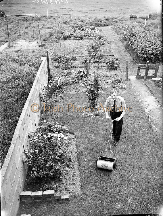 Gardening competition winners, J.B. Catter, Whitehall and Mr. P. Meahans, Santry..11.08.1960