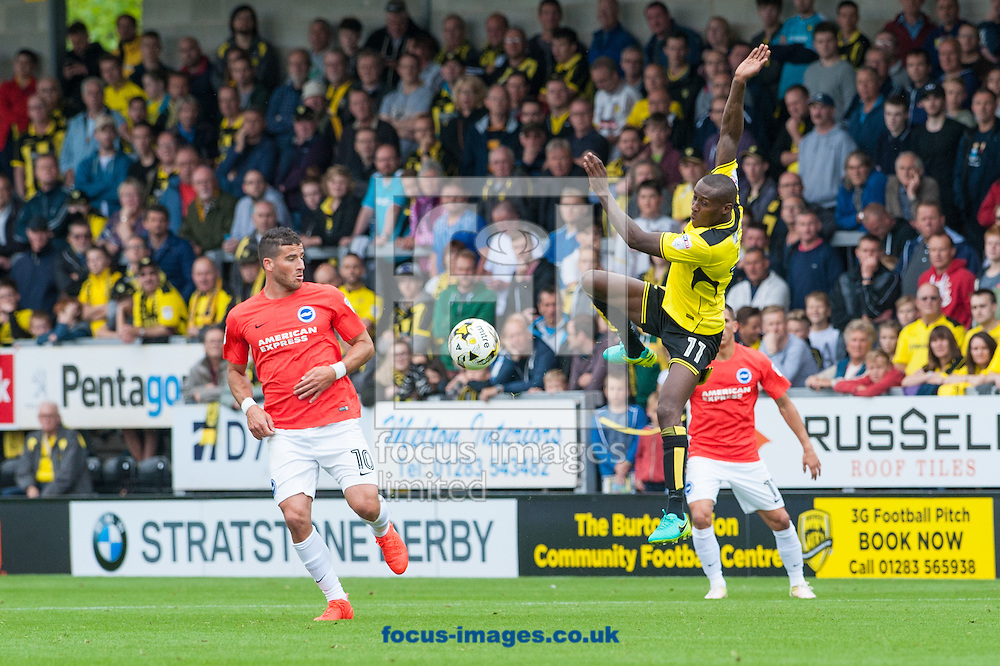Lloyd Dyer of Burton Albion attempts to keep the ball from Tomer Hemed of Brighton and Hove Albion during the Sky Bet Championship match at the Pirelli Stadium, Burton upon Trent<br /> Picture by Matt Wilkinson/Focus Images Ltd 07814 960751<br /> 17/09/2016