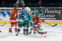 KELOWNA, CANADA - NOVEMBER 5: The Kelowna Minor Hockey Initiation division play a game during intermission at the Kelowna Rockets against the Victoria Royals  on November 5, 2014 at Prospera Place in Kelowna, British Columbia, Canada.  (Photo by Marissa Baecker/Shoot the Breeze)  *** Local Caption *** Kelowna Minor Hockey; Initiation;