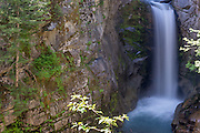 Christine Falls at Mt. Rainier National Park