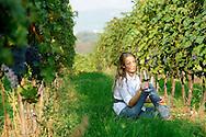 Agricoltura, degustazione vino rosso nella Vallagarina, 2 ottobre 2009 © foto Daniele Mosna