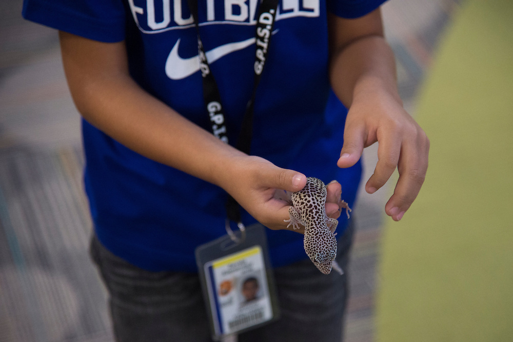 A student holds a gecko in the library at Lorenzo De Zavala Environmental Science Academy in Grand Prairie, Texas on October 7, 2016. &quot;CREDIT: Cooper Neill for The Wall Street Journal&quot;<br /> PUBLICS