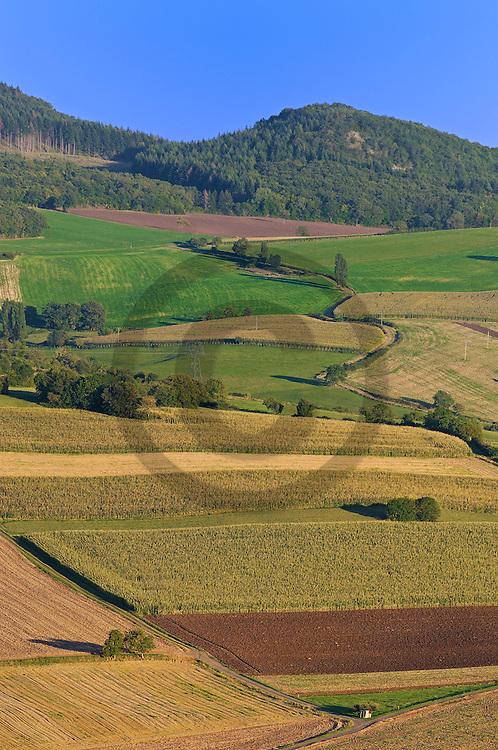 05/09/06 - COMTE BILLOMOISE - PUY DE DOME - FRANCE - Entre Limagne et dauphine d Auvergne, paysage de polycultures - Photo Jerome CHABANNE