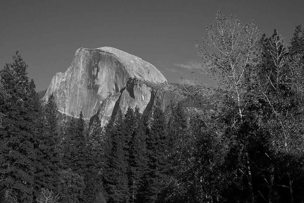 Half Dome And Pines - Merced River Bridge View - Yosemite - Black & White