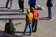 Boule players with poodle.