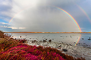 Panorama of a double rainbow by the lake