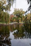 USA, Massachusetts, Boston. Boston Public Garden