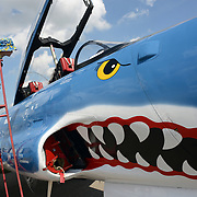 Nathan Borsch, 5, admires the Canadian Forces T-33 Mako Shark jet during Aviation Fun Day at the Waterloo International Airport in Breslau on Saturday. <br /> <br /> IAN STEWART / SPECIAL TO THE RECORD