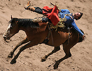 Bareback Rider CIMMARON LAWRENCE GERKE scores an 81 riding 442 HIPNOTIC HV, Championship Sunday, 29 July 2007, Cheyenne Frontier Days