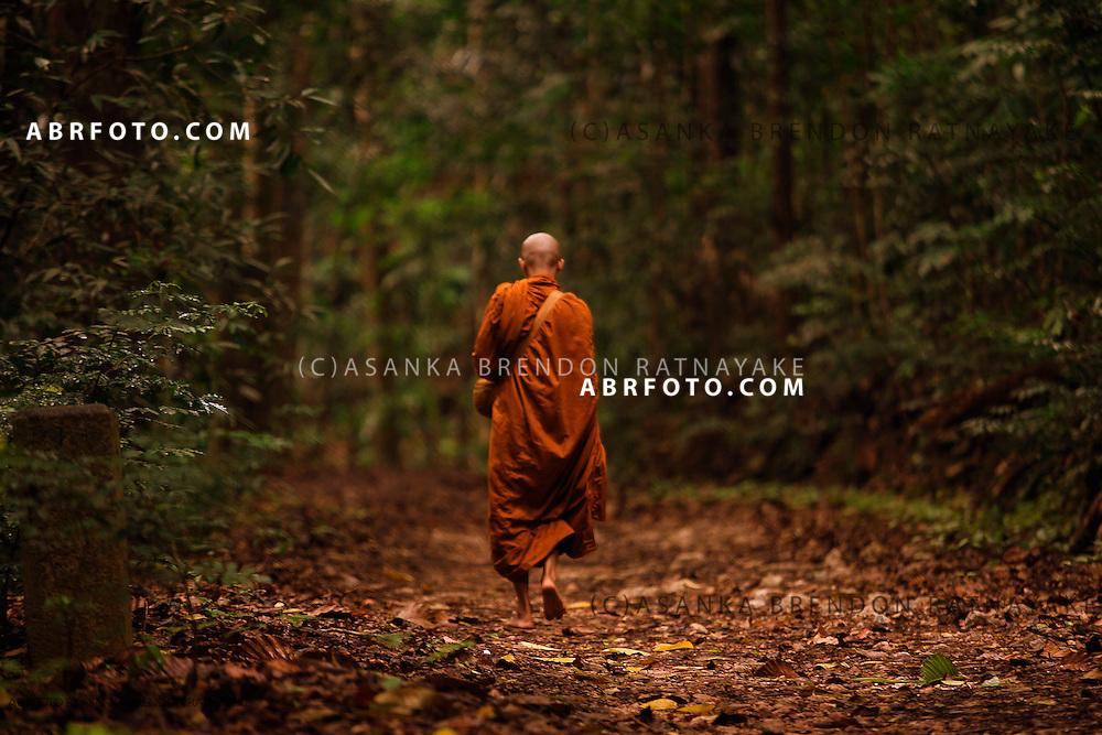 Buddhist Monk walking towards one of the three Buddhist meditation hermitages.