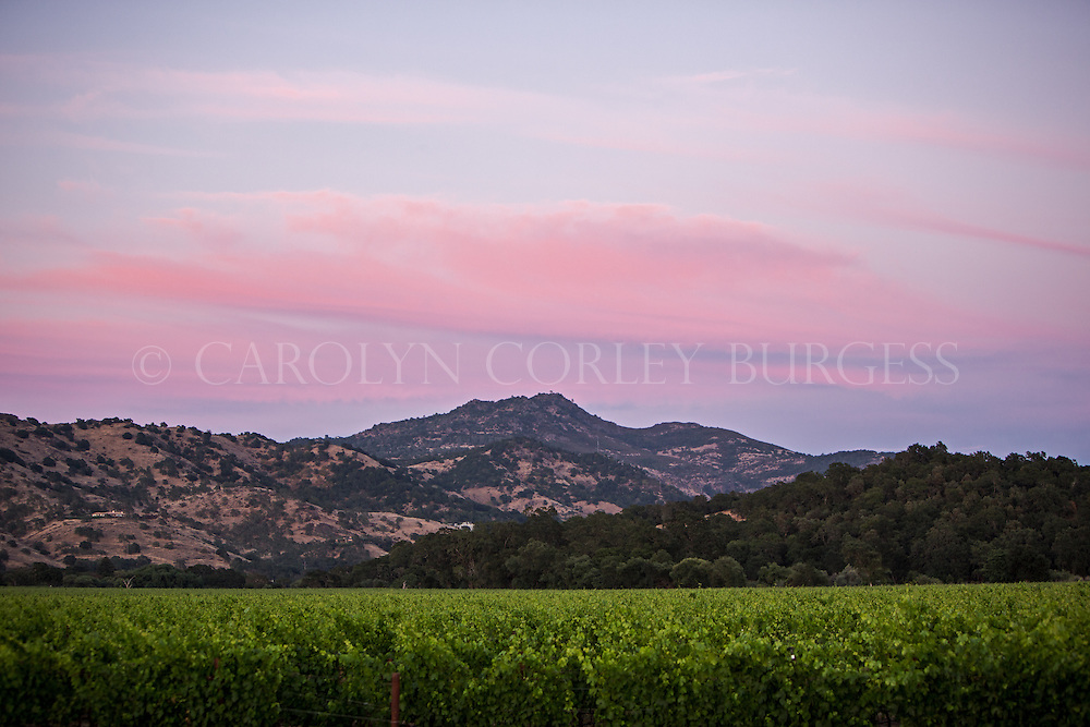 Sunset sky over the Stags Leap Wine District.