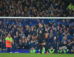 LIVERPOOL, ENGLAND - Tuesday, October 27, 2015: Everton's goalkeeper Joel Robles celebrates after his save made the difference in the 4-3 penalty shoot-out victory after a 1-1 draw with Norwich City during the Football League Cup 4th Round match at Goodison Park. (Pic by David Rawcliffe/Propaganda)