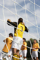 Soccer Goalie Reaching for the Ball