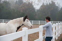 man looking at a beautiful horse