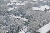 First winter snow in Beijing.