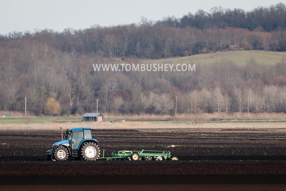 Goshen, New York - A farmer works in a black dirt field off Pumpkin Swamp Road on April 10, 2017.