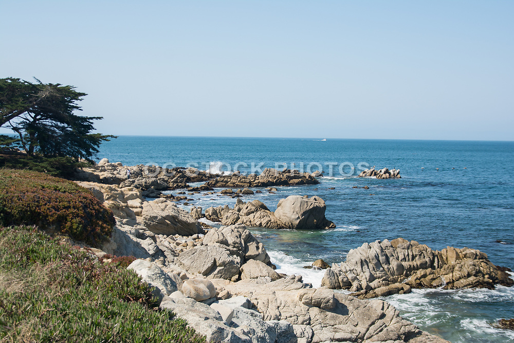 Rocky Coastline Of Monterey California