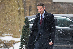 © Licensed to London News Pictures. 01/03/2018. London, UK. Defence Secretary Gavin Williamson on Downing Street for a meeting of the Cabinet ahead of Prime Minister Theresa May's speech on Brexit. Photo credit: Rob Pinney/LNP