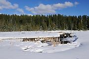 Wetland in winter<br /> Timmins<br /> Ontario<br /> Canada