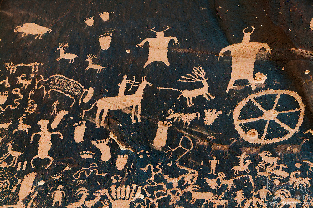 A variety of petroglyphs, including symbols depicting a hunter chasing a deer, are visible on a rock wall at Newspaper Rock State Historic Monument in San Juan County, Utah. The oldest symbols on the rock were made about 2,000 years ago by Archaic, Anasazi, Fremont, Navajo, Anglo and Pueblo people. The oldest petroglyphs on the sandstone appear to be fading, re-covered by desert varnish, a natural manganese-rich coating. In Navajo, the rock is called Tse' Hone, which means a rock that tells a story.