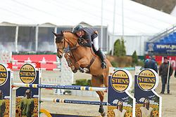 Meyer zu Hartum, Florian, Gabbiano 11<br /> Hagen - Horses and Dreams 2013<br /> Mittlere Tour<br /> © www.sportfotos-lafrentz.de/Stefan Lafrentz