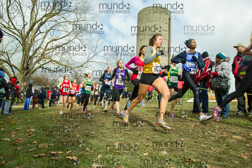 Roshae Jackson of Bramalea competes at the OFSAA Cross Country Championships in Waterloo Ontario, Saturday, November 1, 2014.<br /> Mundo Sport Images/ Geoff Robins