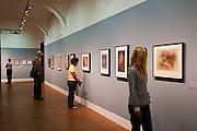 Ausstellungsräume, Albertina, Wien, Österreich.Verwendung nur redaktionell  |.exhibition room, Albertina, Vienna, Austria