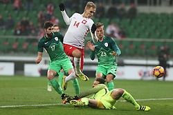 14.11.2016, Stadion Miejski, Wroclaw, POL, Testspiel, Polen vs Slowenien, im Bild MIHA MEVLJA SLO LUKASZ TEODORCZYK POL ANTONIO DELAMEA MLINAR SLO VID BELEC SLO GOL BRAMKA NA 1-1 // during the international friendly football match between Poland vs Slovenia at the Stadion Miejski in Wroclaw, Poland on 2016/11/14. EXPA Pictures &copy; 2016, PhotoCredit: EXPA/ Newspix/ Michal Chwieduk<br /> <br /> *****ATTENTION - for AUT, SLO, CRO, SRB, BIH, MAZ, TUR, SUI, SWE, ITA only*****